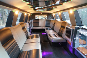 excursion limousine tallahassee